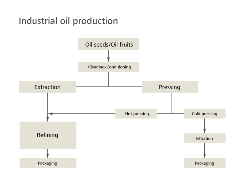 Process scheme production of edible oil in the food industry
